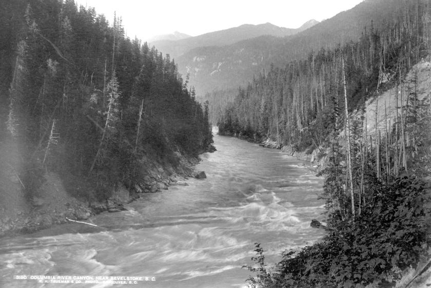 Columbia River Near Revelstoke