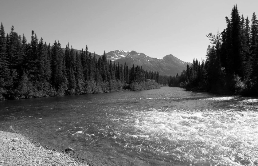 cottonwood river_01