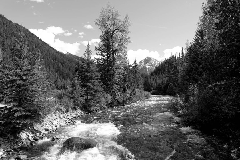 Cayoosh Creek_01A
