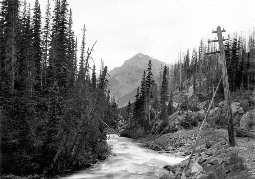 Kicking Horse River, near summit of Rockies (1900)_01)