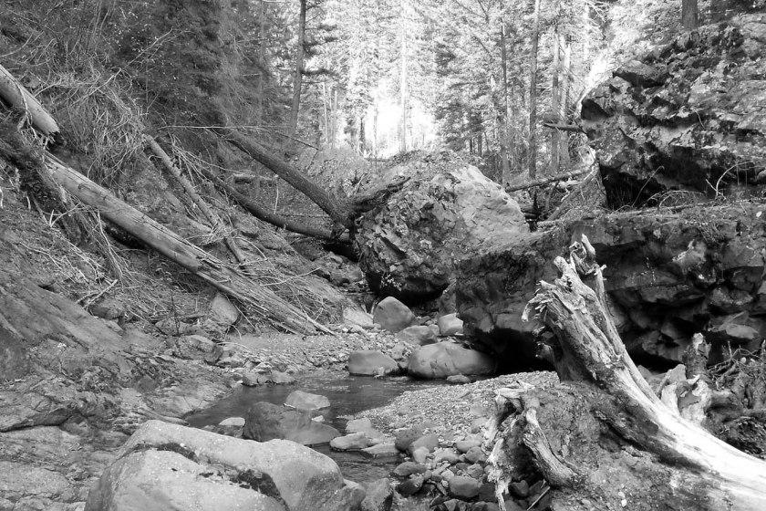 Blakeburn Creek_01