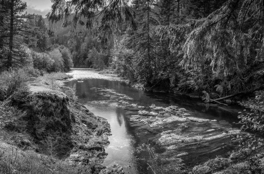 Cowichan River trail