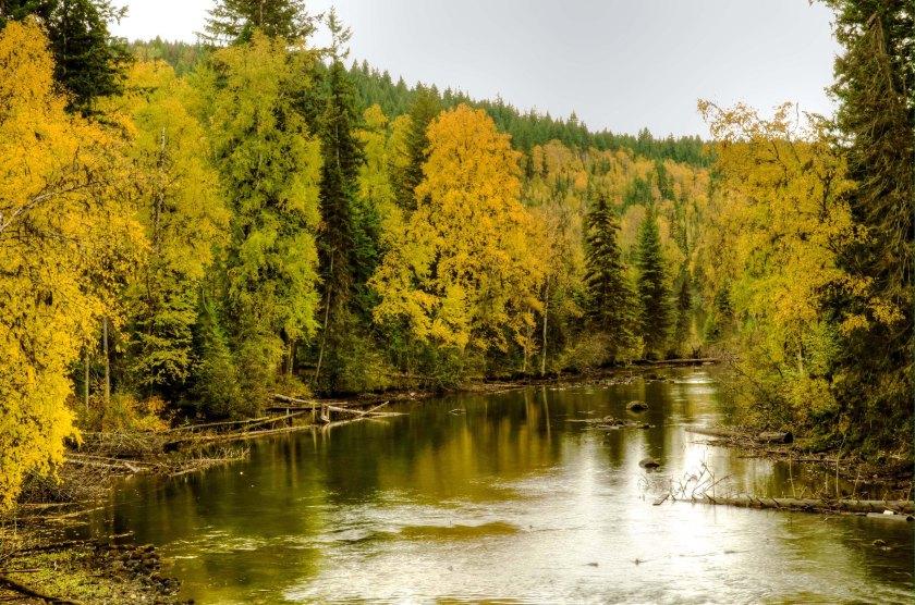 Horsefly River_02
